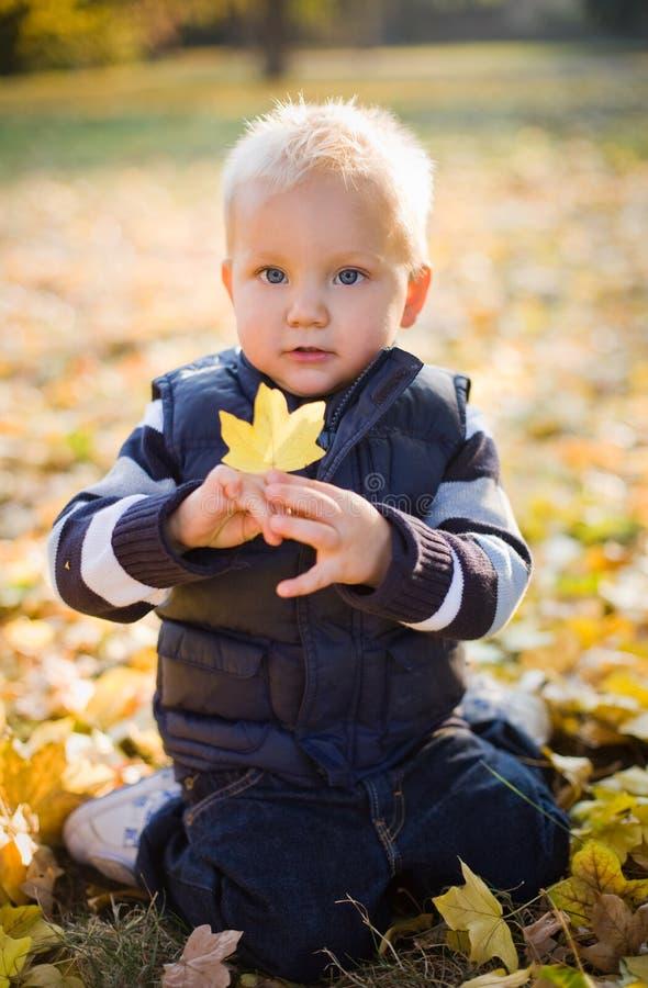 Netter junger Junge draußen in der Natur. lizenzfreies stockfoto