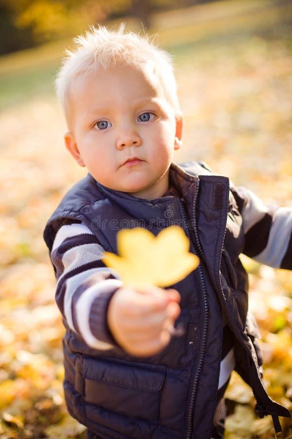 Netter junger Junge draußen in der Natur. stockfotos