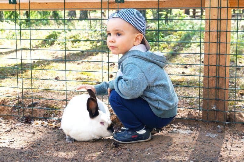 Netter kleiner Junge, der ein weißes Kaninchen streichelt lizenzfreie stockbilder