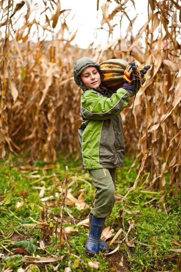 Netter kleiner Junge, der einen großen Kürbis trägt lizenzfreie stockbilder