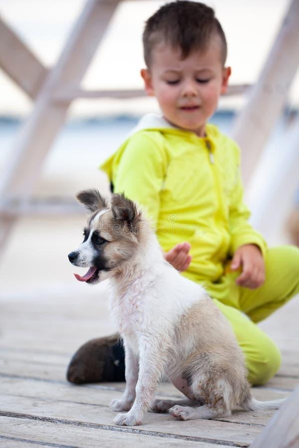 Netter kleiner Junge mit seinem Welpen Schutz von Tieren stockfoto