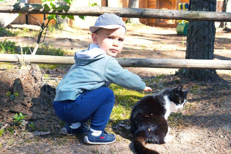 Netter kleiner Junge spielt mit Schwarzweiss-Kätzchen, Schlagmänner es draußen lizenzfreie stockfotos