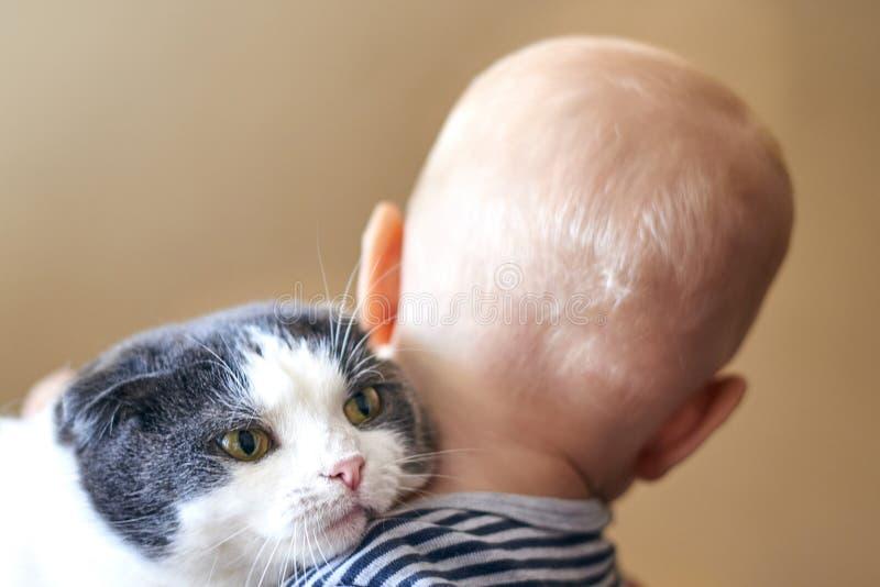 Netter kleiner Junge umarmt eine große Katze stockbilder