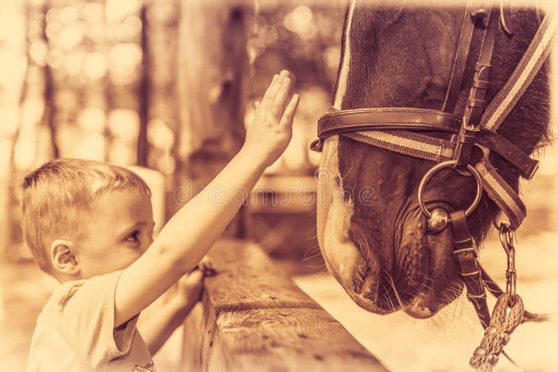 Netter kleiner Junge und ein Pferd im Sepia stockbilder