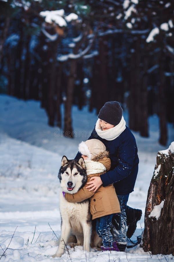 Netter kleiner Junge und Mädchen stehen mit ihrem großen Hund im Winter nahe einem gekrümmten Baum im Wald stockfotografie