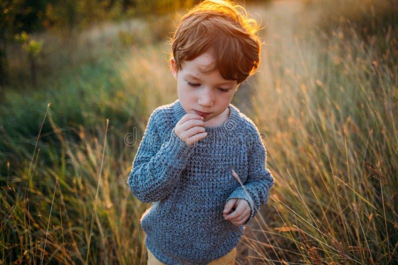 Netter kleines Kinderjunge geht in den Herbstpark und denkt an etwas lizenzfreie stockbilder