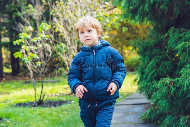 Netter Kleinkindjunge, der Herbsttag genießt Vorschulkind in der bunten herbstlichen Kleidung lernend zu klettern, Spaß im Garten stockbild