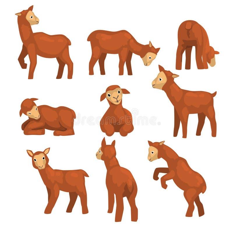 Netter Lammzeichensatz, lustige Vieh mit verschiedenen Gefühlen und Haltungen vector Illustrationen auf einem weißen Hintergrund stock abbildung