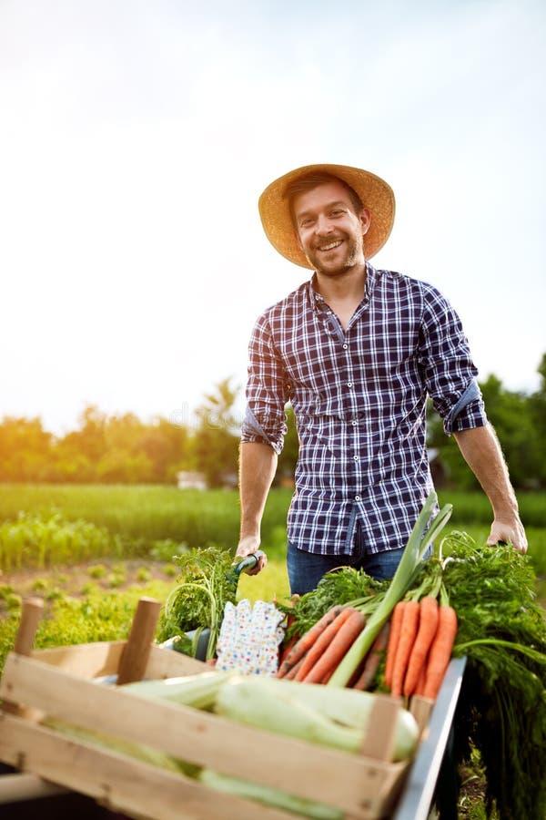 Netter Landwirt mit Schubkarre im Garten lizenzfreie stockfotos