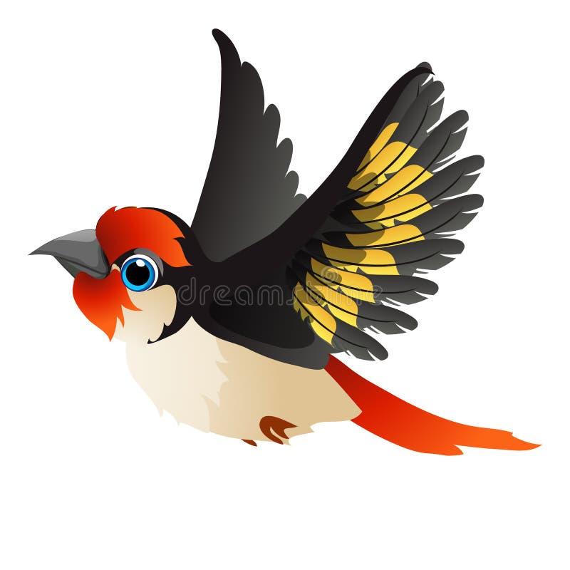 Netter lebhafter Vogel lokalisiert auf weißem Hintergrund Vektorkarikatur-Nahaufnahmeillustration stock abbildung