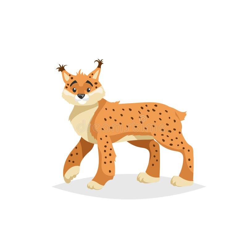 Netter Luchs Art-Vektorillustration der Karikatur komische des Waldwilden Tieres Rotluchs stock abbildung
