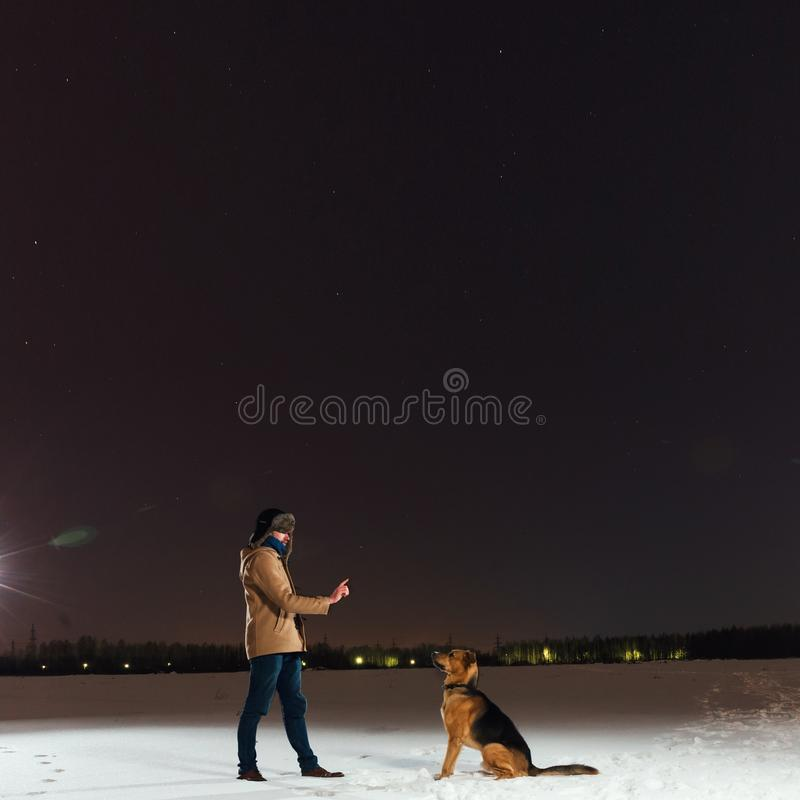 Netter Mischzuchthund draußen Bastard im Schnee, der auf einem Gebiet schaut traurig sitzt stockfotografie