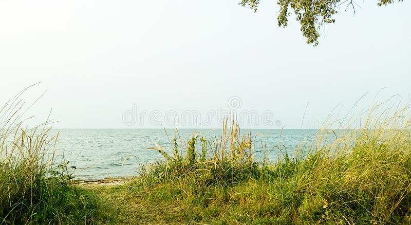 Netter Platz im Gras nahe dem Meer lizenzfreie stockfotografie