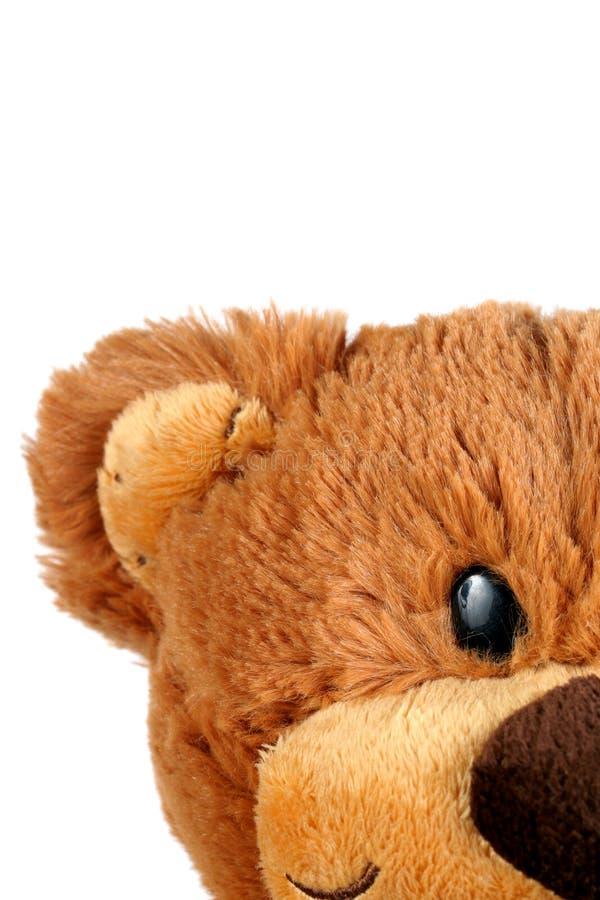 Netter Teddybär stockbilder