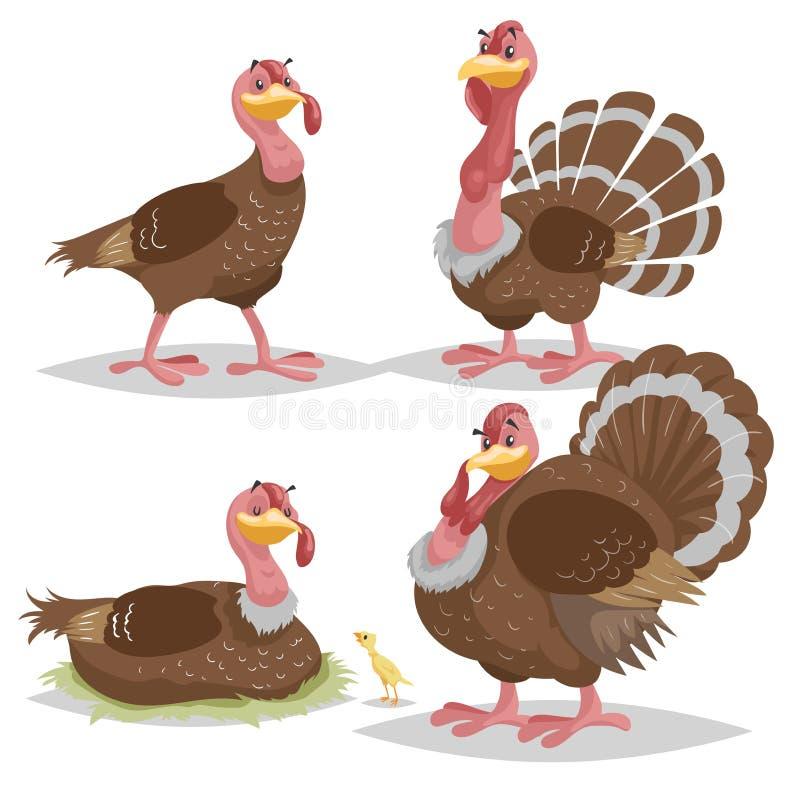 Netter Truthahnsatz Einfacher Steigungsentwurf der Karikatur Weibliche und männliche Vogelstellung Danksagungssymbole Viehcharakt lizenzfreie abbildung