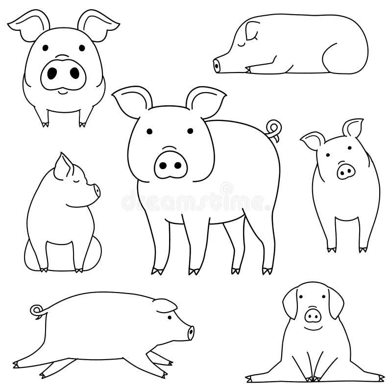 Netter und einfacher Schweingekritzel-Zeichnungssatz lizenzfreie abbildung