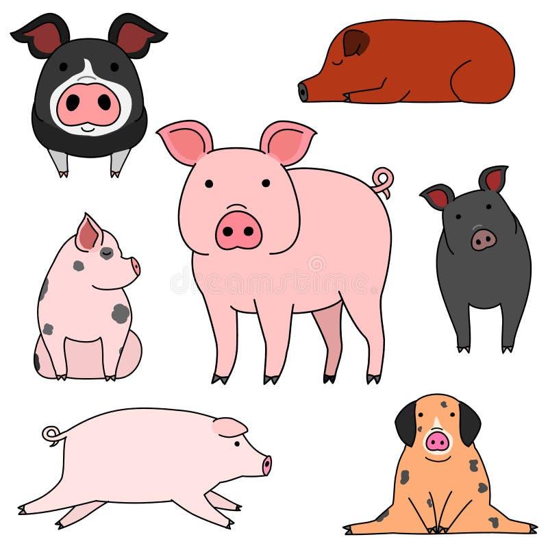 Netter und einfacher Schweingekritzel-Zeichnungssatz stock abbildung