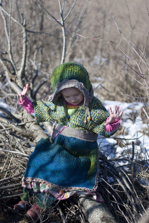 Netter Wald des Babys im Frühjahr stockfotos