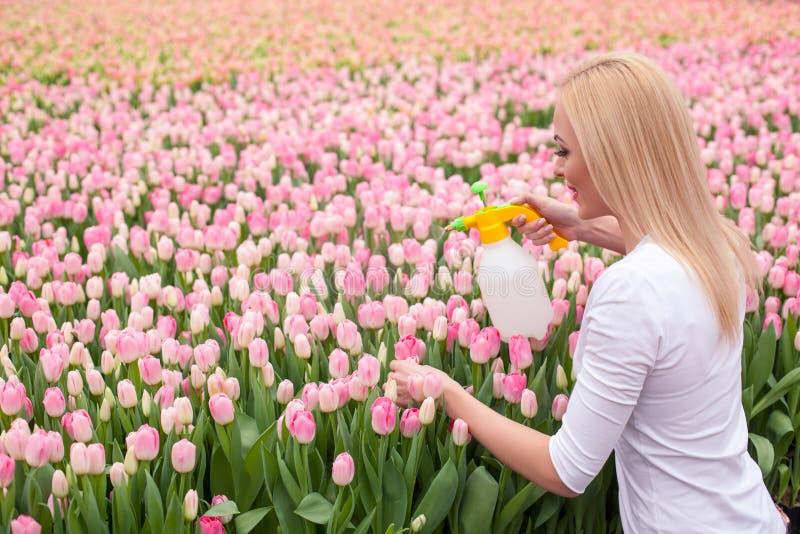 Netter weiblicher Gärtner arbeitet mit Blumen lizenzfreie stockbilder