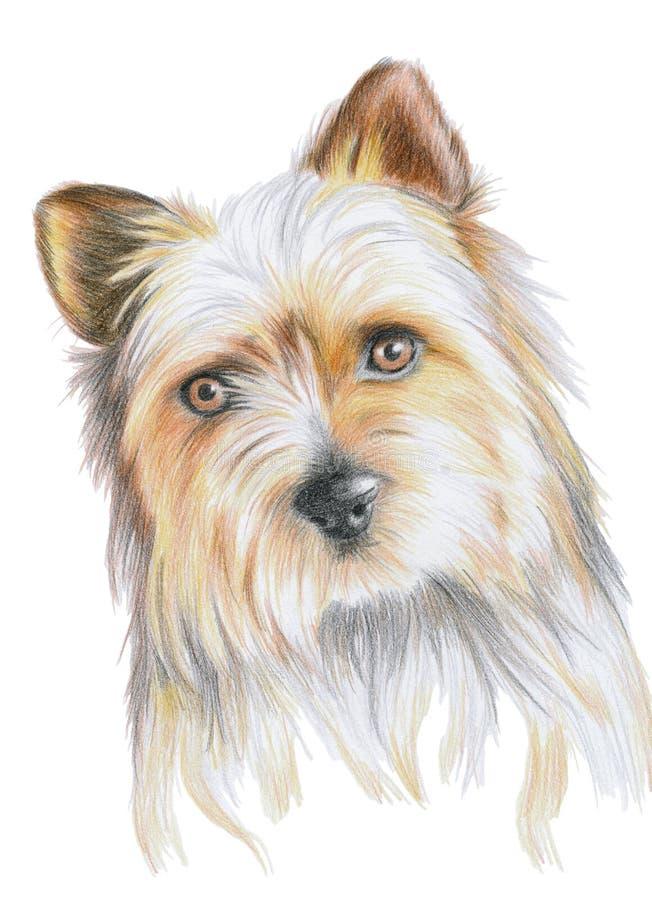 Netter Welpen-Hund lizenzfreie abbildung