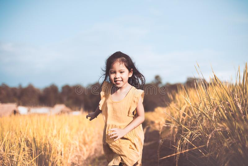 Nettes asiatisches Kindermädchen, das den Spaß, zum in das Getreidefeld zu laufen hat stockfotos