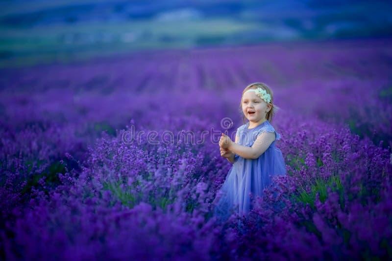 Nettes Baby auf dem bl?henden Gebiet des Lavendels lizenzfreie stockbilder