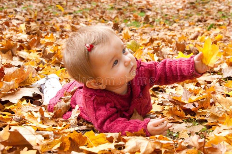 Nettes Baby, das mit Blättern spielt stockbild