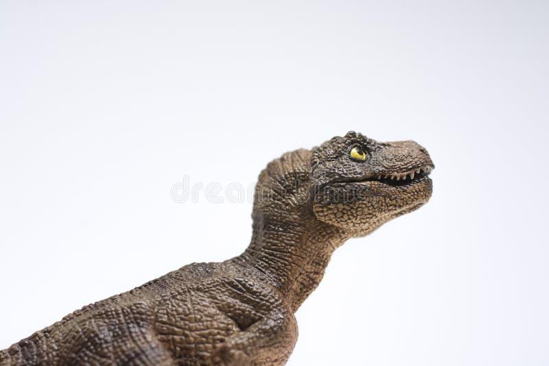 Nettes Baby turannosaurus rex auf weißem Hintergrund stockfotografie