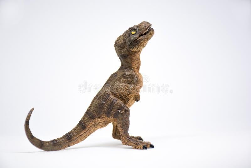 Nettes Baby turannosaurus rex auf weißem Hintergrund stockbild