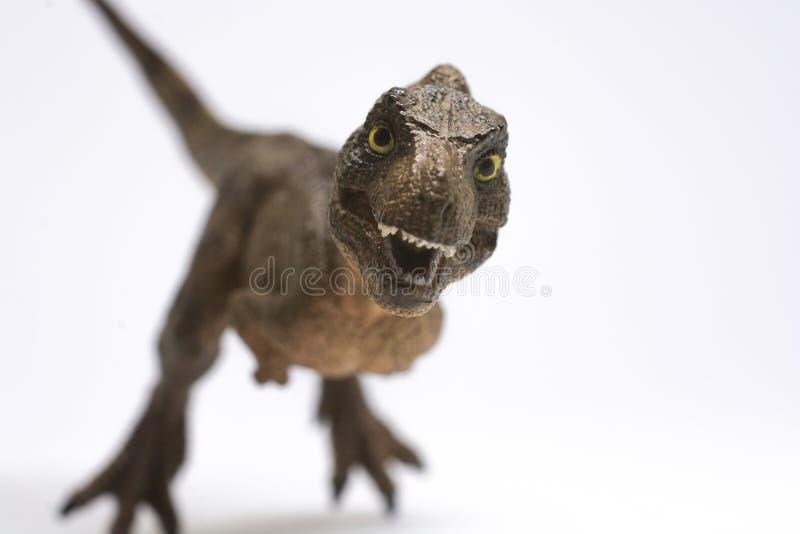 Nettes Baby turannosaurus rex auf weißem Hintergrund lizenzfreie stockfotografie
