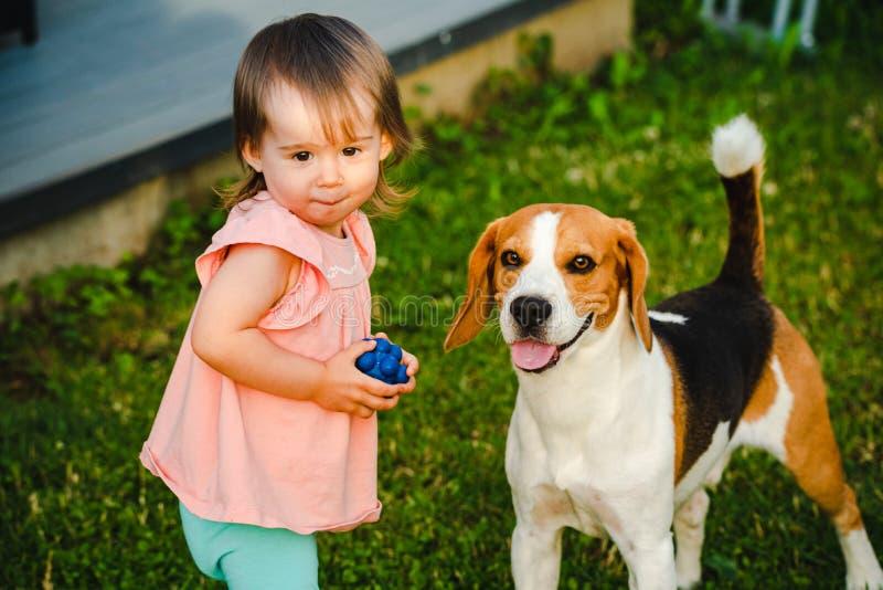 Nettes Baby zusammen mit Spürhundhund im Garten am Sommertag stockbild