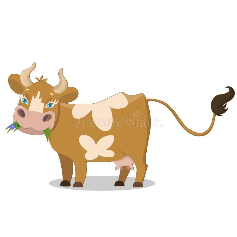 Nettes Braun beschmutzte Kuh, lustige Vieh-Zeichentrickfilm-Figur-Vektor Illustration auf einem wei?en Hintergrund lizenzfreie abbildung