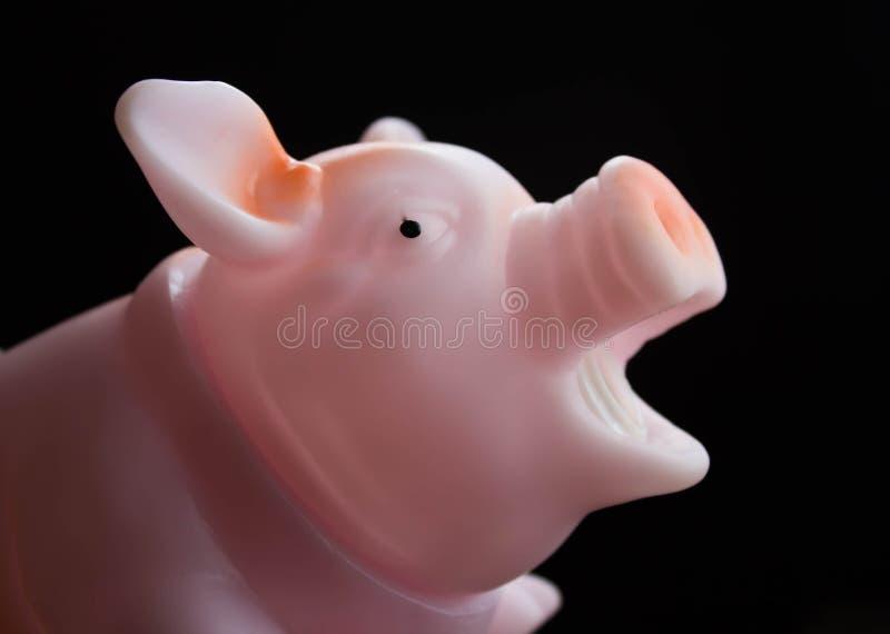 Nettes glückliches Schwein lokalisiert auf Schwarzem stockfotografie