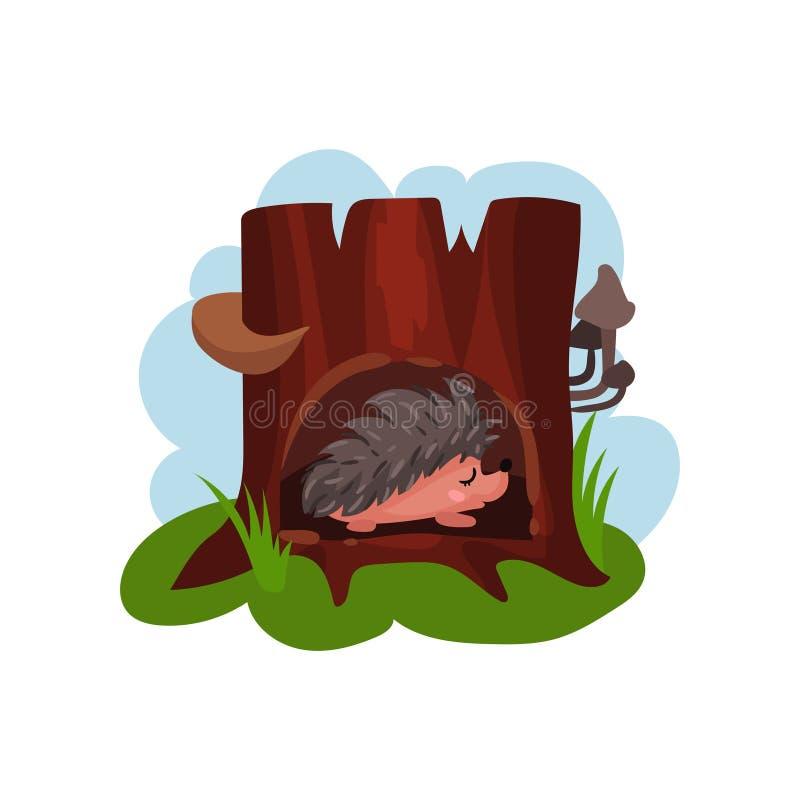 Nettes Igeles, das in der Höhle des Baums, des ausgehöhlten heraus alten Baums und des lustigen Tieres innerhalb Vektor Illustrat stock abbildung
