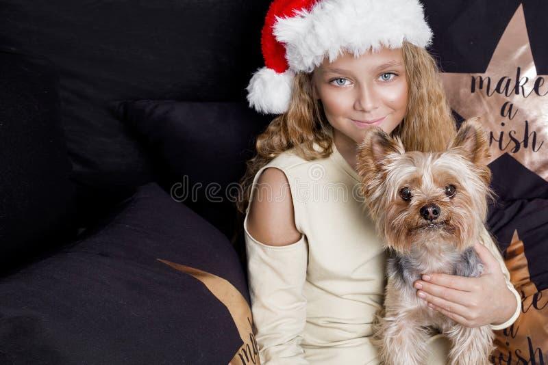 Nettes junges Mädchen mit dem langen blonden Haar und ein Santa Claus-Hut, der einen Welpen hält, züchten Yorkshire-Terrier, der  lizenzfreie stockfotos