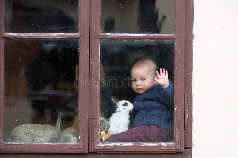 Nettes kleines Baby, spielend mit den Haustierkaninchen und sitzen auf Weinlesefenster stockfotos