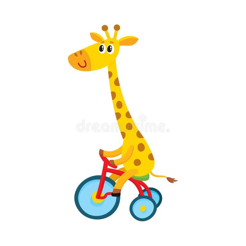 Nettes kleines Giraffencharakter-Reitfahrrad, Dreirad, fahrend, Karikaturillustration rad lizenzfreie abbildung