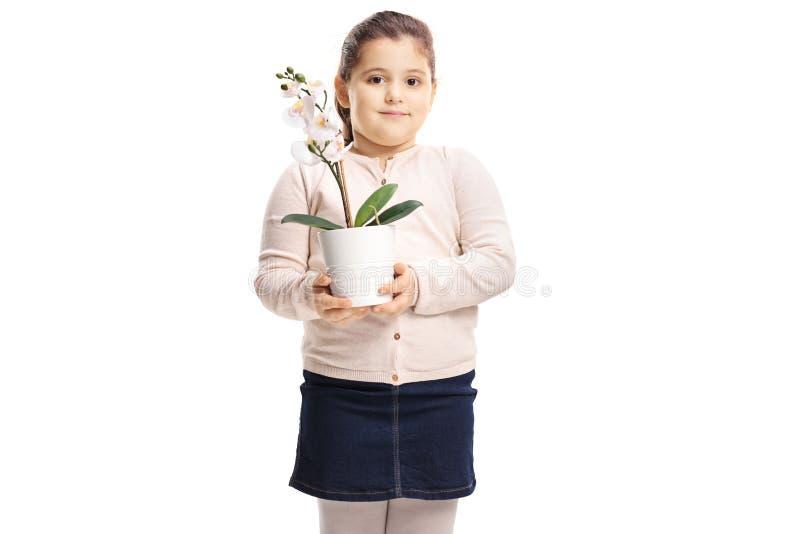 Nettes kleines Mädchen, das eine Orchideenblume hält stockfotos