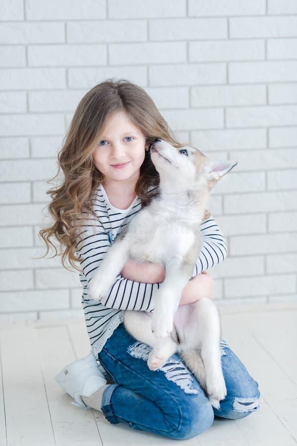 Nettes kleines Mädchen, das heiseren Welpen auf einem weißen Hintergrund umarmt lizenzfreie stockfotografie
