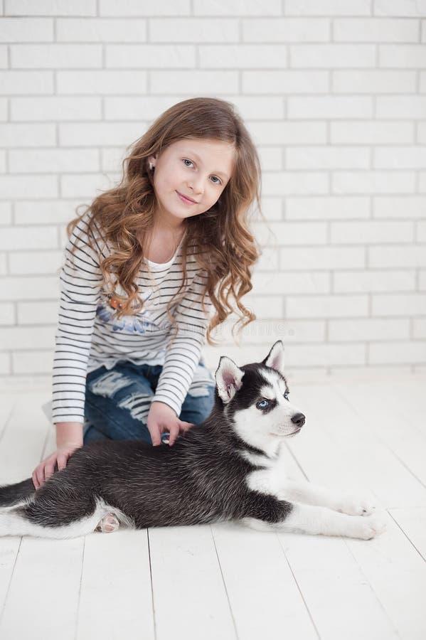 Nettes kleines Mädchen, das heiseren Welpen auf einem weißen Hintergrund umarmt lizenzfreies stockbild