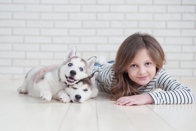 Nettes kleines Mädchen, das heiseren Welpen auf einem weißen Hintergrund umarmt lizenzfreie stockfotos