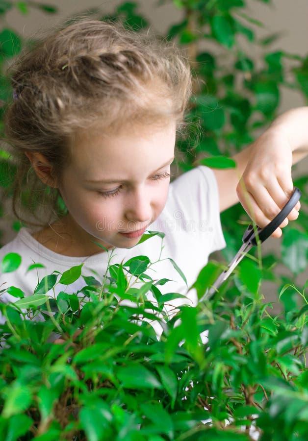 Nettes kleines Mädchen, das mit Blumen arbeitet lizenzfreies stockfoto