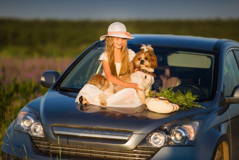 Nettes kleines Mädchen in einem Hut, der auf der Haube des Autos nahe bei einem Hund und einem Blumenstrauß von Blumen sitzt Kras lizenzfreie stockbilder