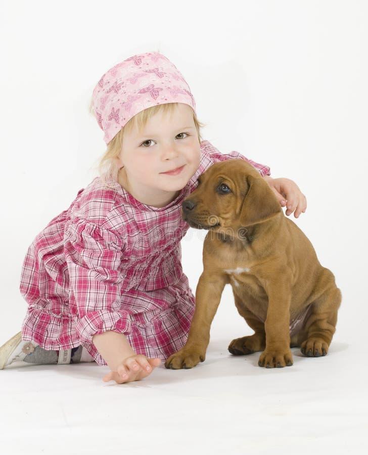 Nettes kleines Mädchen mit Welpen stockbilder