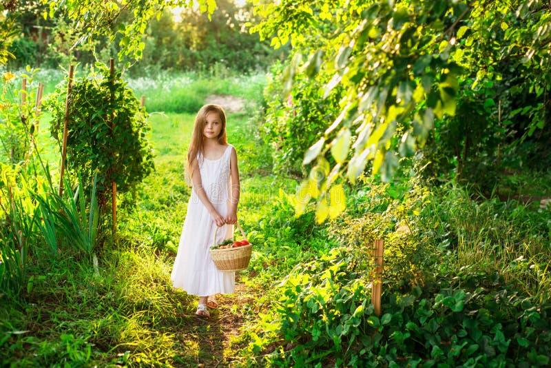 Nettes lächelndes kleines Mädchen hält Korb mit Obst und Gemüse stockbild