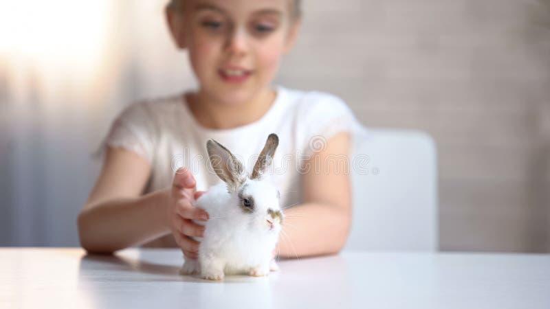 Nettes Mädchen, das ihr kleines entzückendes Kaninchen genießt, reizendes Haustier streicht und bewundert lizenzfreie stockbilder