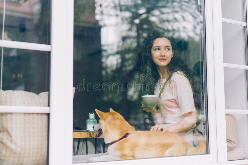 Nettes Mädchen, das im Café mit dem Tasse Kaffee streichelt netten Zucht- Hund sich entspannt stockfoto