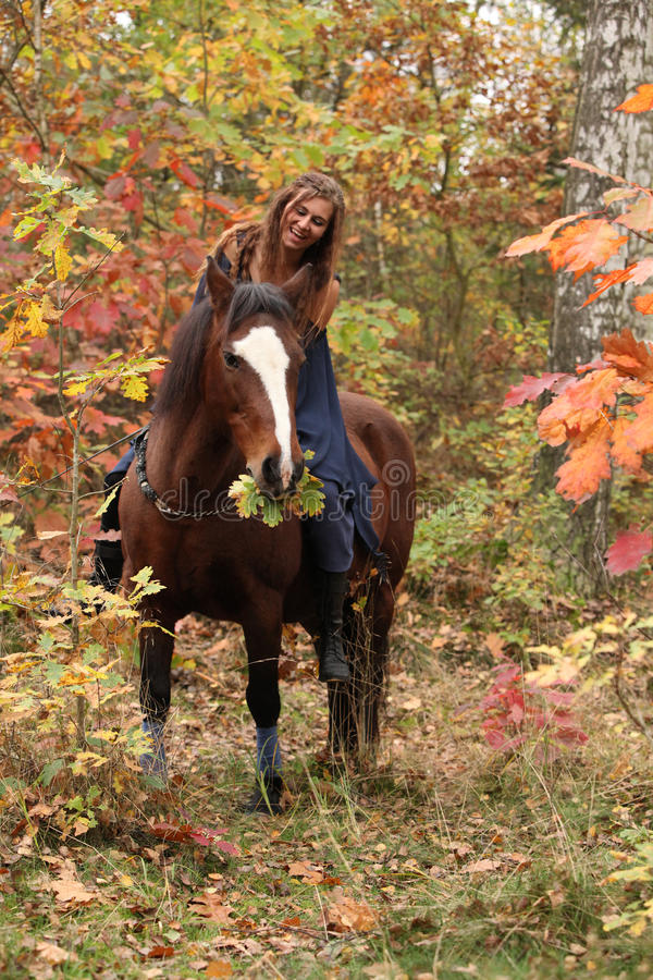 Nettes Mädchen mit braunem Pferd im Herbst stockbilder