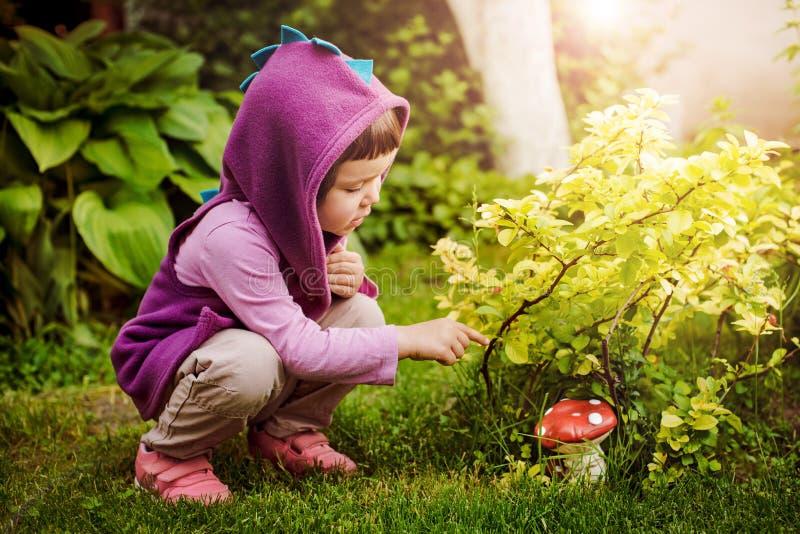 Nettes Mädchensammeln vermehrt sich in einen Sommerwald explosionsartig, der ungenießbare giftige Pilze betrachtet stockbild