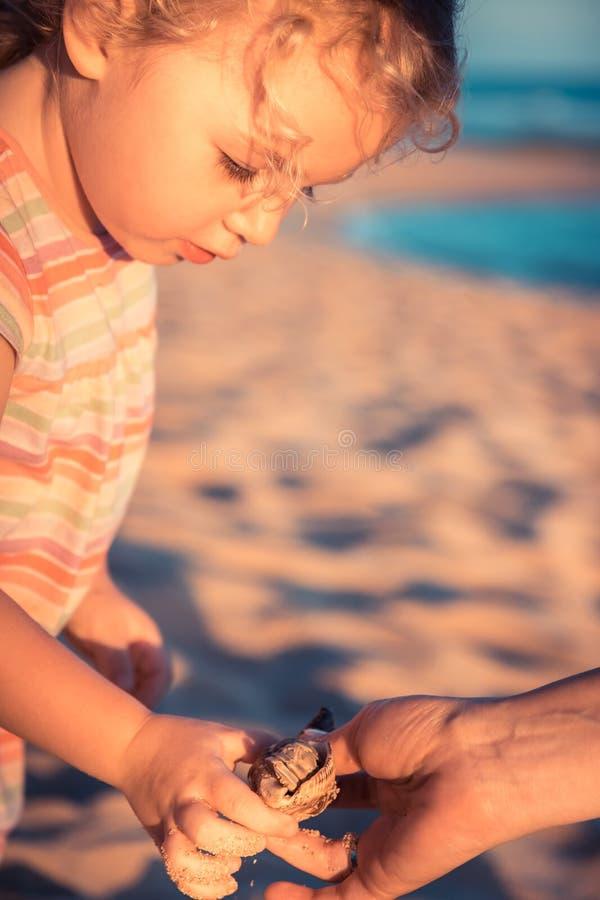 Nettes neugieriges Kindermädchen-Kleinkindporträt, das auf Strand mit Einsiedlerkrebs während des Sommerferien-Konzeptkindheitsle lizenzfreies stockbild